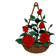 Isolated Hanging Basket Of Many Roses