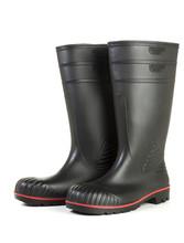 Black Wellington Gum Boots Iso...