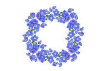 Zarte Vergissmeinnicht Blüten Im Kranz Dekoration Auf Weißem Hintergrund