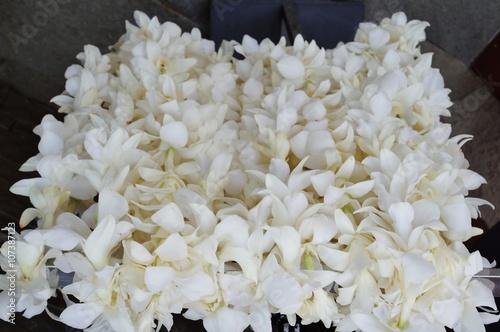 Fragrant white tuberose flower lei necklaces awaiting visitors in fragrant white tuberose flower lei necklaces awaiting visitors in hawaii mightylinksfo Images