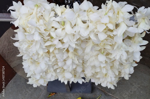 Fragrant white tuberose flower lei necklaces awaiting visitors in fragrant white tuberose flower lei necklaces awaiting visitors in hawaii mightylinksfo