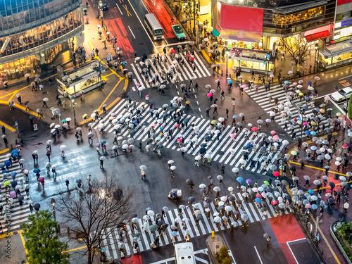 Plakat Shibuya przejście w Tokio w Japonii