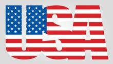 USA Flag Text Icon