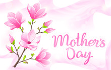 VECTOR Eps 10. For Mother's Day And International Women's Day With Magnolia Branch! Pink Abstract Template. Elegant Waves Of Silk For Cute Background. Flecks Of Sunlight On Pink Silk