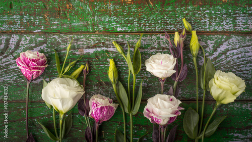 Beautiful flowers on the colorful wooden background