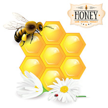 Bee, Honeycomb, Daisies And Ho...