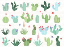 Vector Set Of Cactus And Succu...