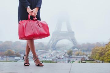 Fototapeta na wymiar shopping in Paris, fashion woman near Eiffel Tower in France, Europe