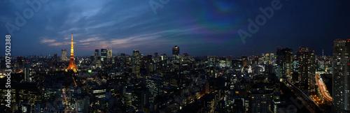 Ingelijste posters Tokio 東京夜景スカイライン