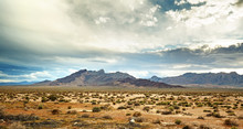 Panoramic View Of The Mojave D...