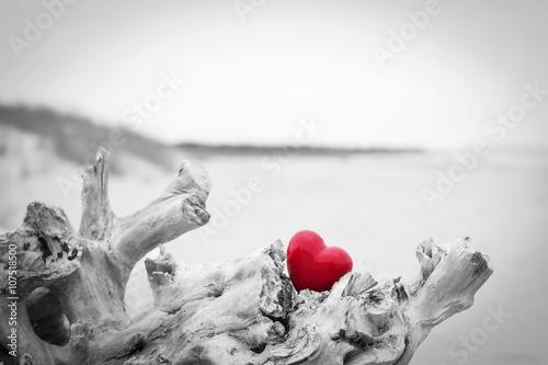 czerwone-serce-w-pniu-drzewa-na-plazy-symbol-milosci-czerwony-przeciwko-czerni-i-bieli