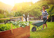 Leinwandbild Motiv Frau arbeitet im Garten am Hochbeet-gardening 15