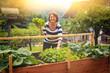 Leinwandbild Motiv Frau erntet Salat vom eigenen Hochbeet/gardening 17