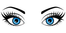Female Blue Eyes Isolated On W...