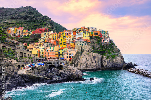 Colorful houses on a rock in Manarola, Cinque Terre, Italy Poster