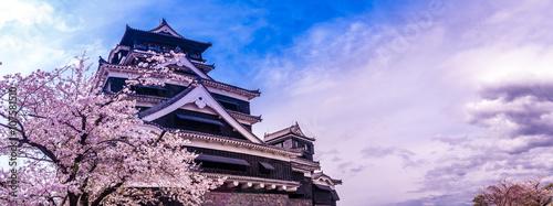 In de dag Kersen 熊本城と桜