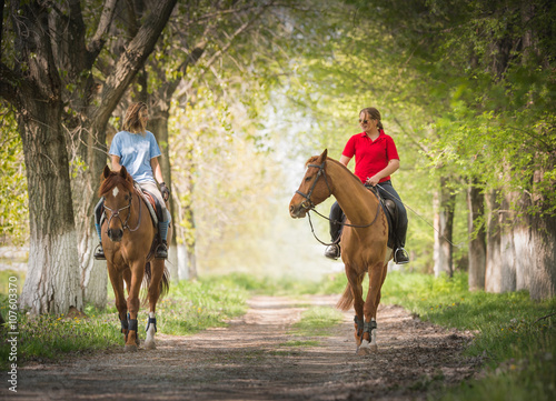 Poster Equitation Girls on a horse