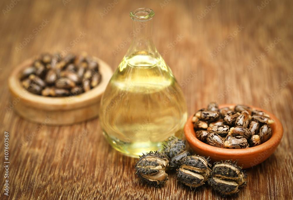 Obraz Castor beans and oil fototapeta, plakat