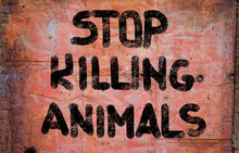 Stop Killing Animals Concept
