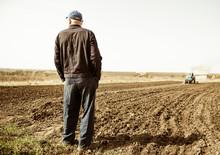 Farmer On Spring Farmland