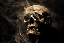 Front Of Real Skull In Abstract Smoke