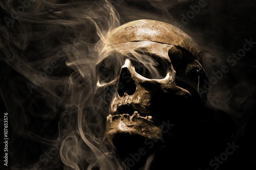 Photo front of real skull in abstract smoke