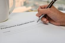 Writing Employment Application...