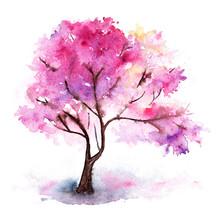 Watercolor Single Pink Cherry Sakura Tree Isolated