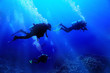 canvas print picture - group of divers underwater on a coral reef