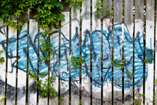 Color DSLR Stock Image Of Abstract Graffiti On A Wooden Slat Fence