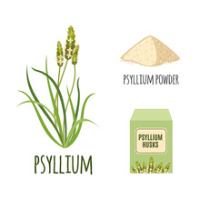 Superfood Psyllium Set In Flat...