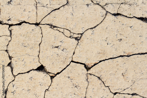 Fotografía  Cracked pavement brick