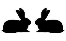 Two Bunny Silhouette On A White Background