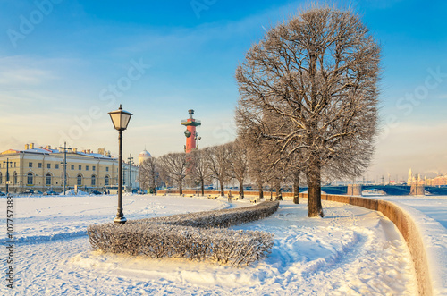 Fotografie, Obraz  The trees at the square near Old Stock Exchange building and a rostral column at