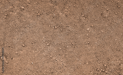 Slika na platnu Brown ground surface. Close up natural background