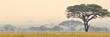 canvas print picture - Beautiful scene of Serengeti National park