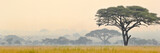 Fototapeta Sawanna - Beautiful scene of Serengeti National park