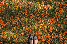 Top View. Flat Shoes On Bastard Teak Ground In Morning Light. Copy Space
