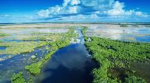 Aerial Sunset View Of Everglad...