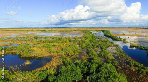 In de dag Luchtfoto Aerial view of Everglades swamp, Florida
