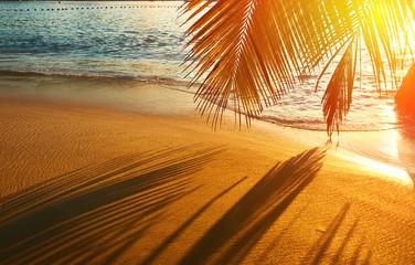 Fototapeta piękny zachód słońca na Seszelach