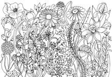 Hand Drawn With Ink Background With Doodles, Flowers, Leaves. Nature Design For Relax And Meditation.