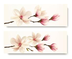 Fototapeta Wieloczęściowe Two magnolia banners. Vector.