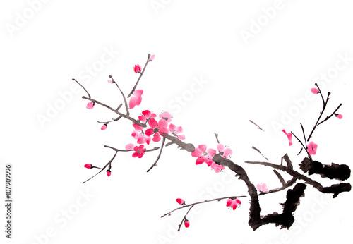 wisnie-japonskie