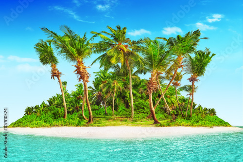 Wall Murals Central America Country Whole tropical island within atoll in tropical Ocean.