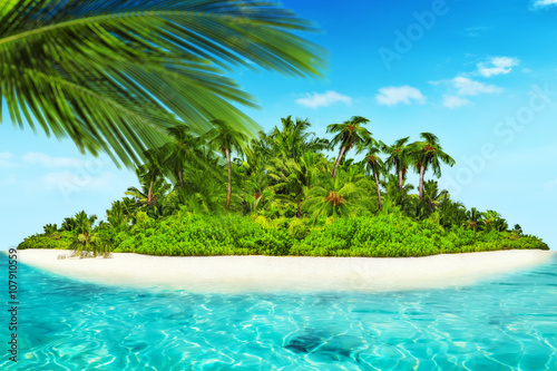 Foto op Plexiglas Caraïben Whole tropical island within atoll in tropical Ocean.