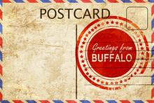 Buffalo Stamp On A Vintage, Ol...