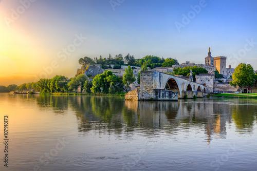 The Pont Saint Benezet and the Palais des Papes in Avignon, South France Canvas Print