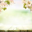 wiosenne tło
