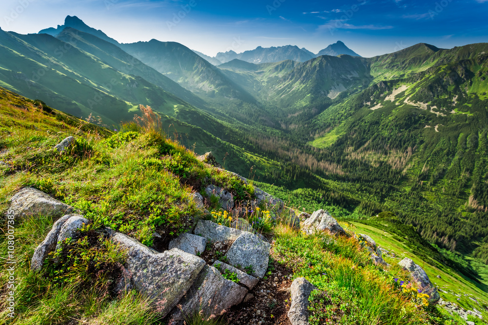 Fototapety, obrazy: Dawn in the Tatras mountains in summer, Poland
